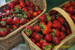 Baskets of strawberries at the farm stand