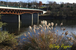 Bridge over the Susquehanna River, Owego New York, November