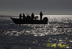 Fishing on the Chesapeake Bay
