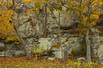 Autumn colors, at entrance to Fort Adams, Newport Rhode Island