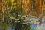 Autumn Reflections, Finger Lakes region, Tioga County, New York