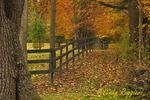Rural Autumn Scene, Tioga County, Finger Lakes region, New York