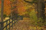 Rural Autumn Scene, Finger Lakes region, Tioga County, New York