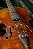 Well Used Violin