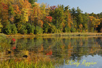 Autumn Scene, Oakley Corners Pond, Owego New York, Finger Lakes region