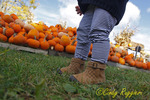 Visit to the pumpkin patch