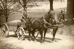 Man Driving Horse-drawn Wagon