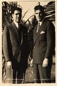 Max Schmeling and W. L. Stribling