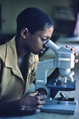 Knuri student using microscope during science class