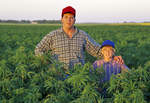 farmer and son in industrial hemp field