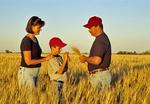 farm family in durum wheat field