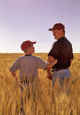 father and son in wheat field