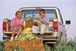 children husking corn