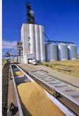 inland grain terminal/ shipping wheat by rail, Swift Current, Saskatchewan, Canada