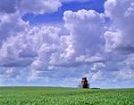 grain elevator, dramatic sky