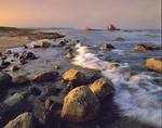 shoreline/old shipwreck