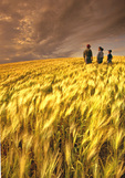 farm family in barley field