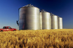 farmer inspecting his grain bins