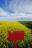 mailbox at edge of farmland, Canadian Prairies