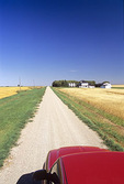 truck on country road through wheat fields, Tiger Hills, Manitoba, Canada