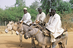 men on donkies near Kano, Nigeria, West Africa
