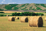 straw rolls, Qu'appelle Valley, Saskatchewan, Canada