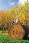 17 year old girl on alfalfa roll, near Winnipeg, Manitoba, Canada