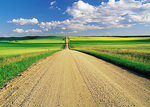 road through farmland, Tiger Hills, Manitoba, Canada