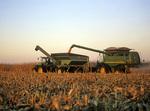 feed corn harvest, near Carey, Manitoba, Canada