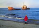 a boy views a shipwreck, Seal Island, Nova Scotia, Canada, Dave Reede,