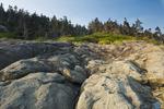 shoreline, Long Island, Bay of Fundy, Nova Scotia, Canada