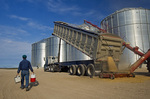 a man carrying his lunch and awater cooler walkstowardsa farm truck as oats are augered into a grain storage bin, near Lorette,  Manitoba, Canada