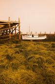 low tide, boat at wharf, Westport,  Brier Island, Nova Scotia, Canada