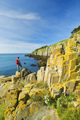 hiker along basalt rock cliffs covered with lichens, Brier Island, Bay of Fundy, Nova Scotia, Canada