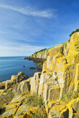 basalt rock cliffs covered with lichens, Brier Island, Bay of Fundy, Nova Scotia, Canada