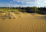 Spirit Sands, Spruce Woods Provincial Park, Manitoba, Canada
