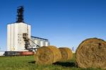 alfalfa rolls with rail hopper cars at an inland grain terminal, Binscarth, Manitoba, Canada