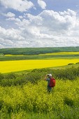 hiker looking down over the Qu´Appelle  River Valley viewing eroded hills and farmland with canola, Saskatchewan, Canada