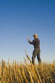 farmer in a field of near Winnipeg, Manitoba, Canada