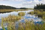 Duck Mountain Provincial Park, Manitoba, Canada