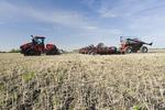 Quad-Trac tractor and air seeder planting winter wheat in a zero till canola stubble field,  near Lorette, Manitoba, Canada