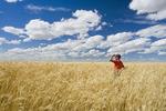 a man in a mature, harvest ready durum wheat field, near Ponteix, Saskatchewan, Canada