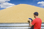 a farmer uses a tablet to input data while next to barley being stored outside, near Ponteix, Saskatchewan, Canada