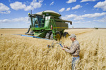 farmer using a tablet in front of his combine during the durum wheat harvest, near Ponteix, Saskatchewan, Canada