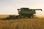 soybean harvest near La Salle, Manitoba, Canada