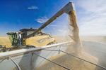 a combine augers wheat into a farm truck during the durum wheat harvest, near Ponteix, Saskatchewan, Canada