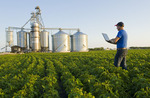 a man uses a computer in a mid-growth soybean field, farmer's inland terminal in the background, Niverville, Manitoba, Canada