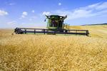 wheat harvest, Manitoba, Canada