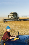 a farm girl uses a laptop computer as a combine harvester work a field during the soybean harvest