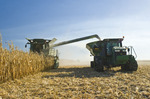 a combine empties into a grain wagon on the go during the feed corn harvest